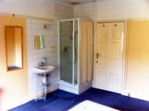 The room is very fortunate to have its own shower and handbasin.
