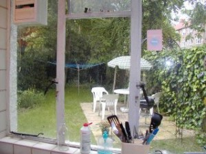 A view of the garden from the kitchen window